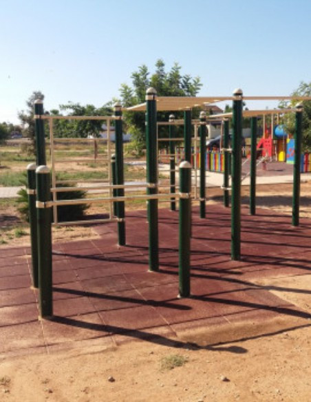 Parques Biosaludables y Calistenia Workout